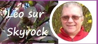 Léo skyrock bordure
