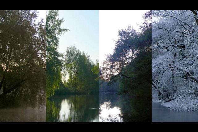 : crédit photo Header image adapté de «Un étang pour toutes les saisons» par Keith Hall via flickr