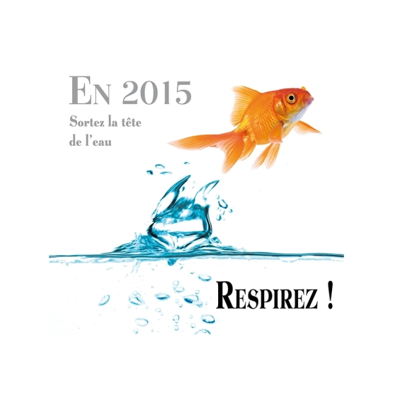 voeux 2015 2